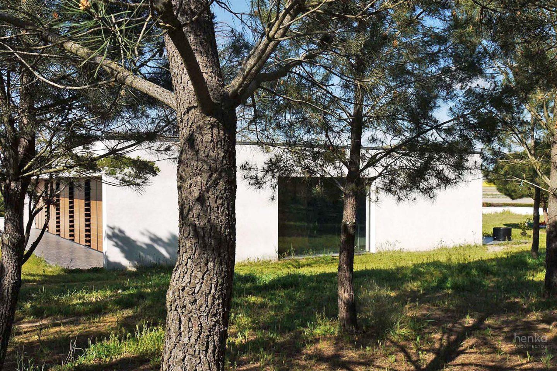 continuidad visual pinar casa campo pinar libreros Bamba Zamora Henka Arquitectos