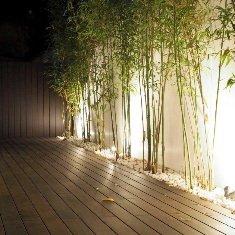 iluminación noche terraza bambues reforma Cabildo Valladolid Henka Arquitectos