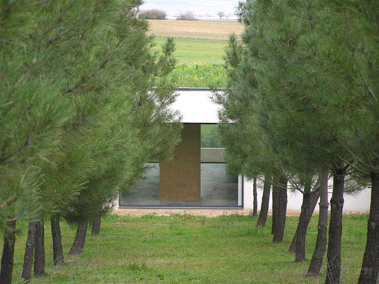 cubierta vegetal mimetismo primavera casa campo pinar libreros Bamba Zamora Henka Arquitectos