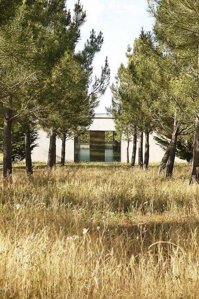 vivienda libreros Bamba Zamora pinar verano henkaarquitectos